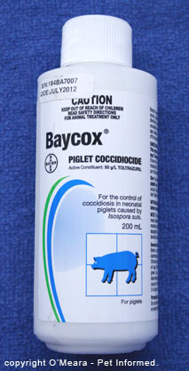 This is an image of Baycox, used to treat coccidia in piglets. The active ingredient is Toltrazuril.