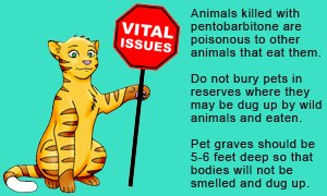 Euthanasia solution or pentobarbitone or pentobarbital is highly toxic to animals that eat the meat or organs of deceased animals.
