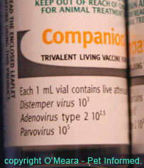 A close up example of one of our infectious diseases vaccines.