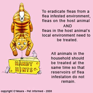 When trying to break the flea life cycle, all animals in the house need to be treated as does the host environment.
