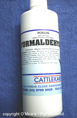 This is an image of one of the formaldehyde preparations available. This solution is quite concentrated and would need to diluted before use.