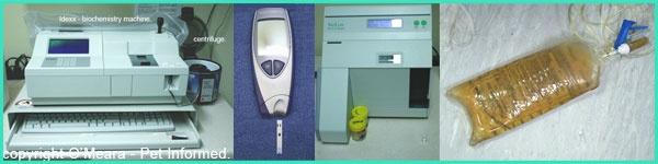 Images of some of the in-house machines used in monitoring parvo patients. These include biochemistry machines, electrolyte machines, glucose measurers (glucometers) and urine output monitoring.
