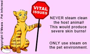Steam clean the pet's environment only, NOT the pet. It seems silly to have to state it, but it happens!
