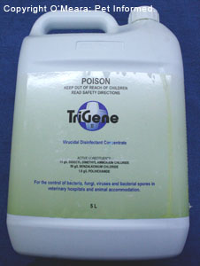 Trigene is a useful disinfectant against parvovirus in dogs and puppies and cats.