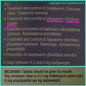 Milbemax will kill dog whipworm infestations